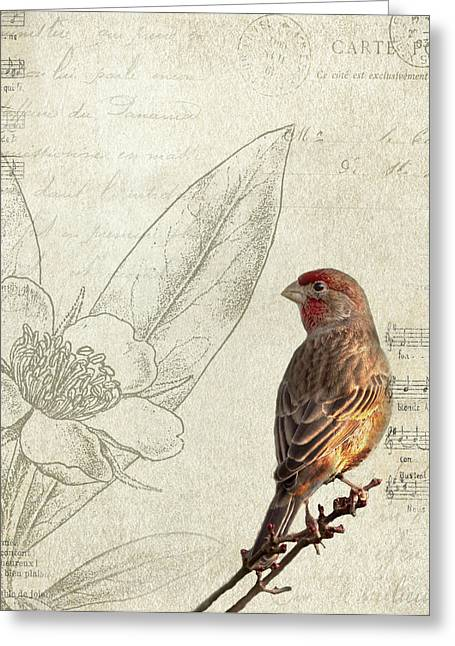 Birding Greeting Cards - Perched Greeting Card by Rebecca Cozart