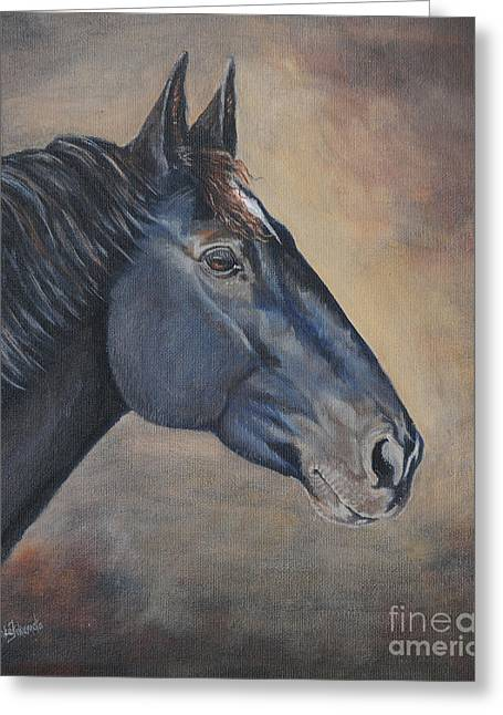 Horse Pictures Greeting Cards - Percheron Hanoverian Portrait Greeting Card by Renee Forth-Fukumoto