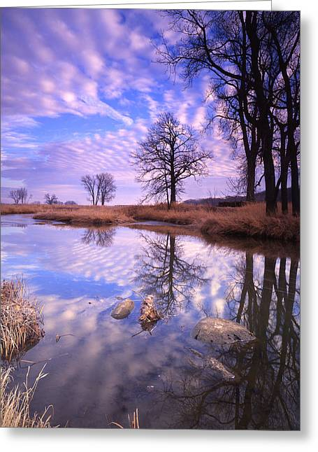 Hack-ma-tack National Wildlife Refuge Greeting Cards - Perfect Clouds Greeting Card by Ray Mathis