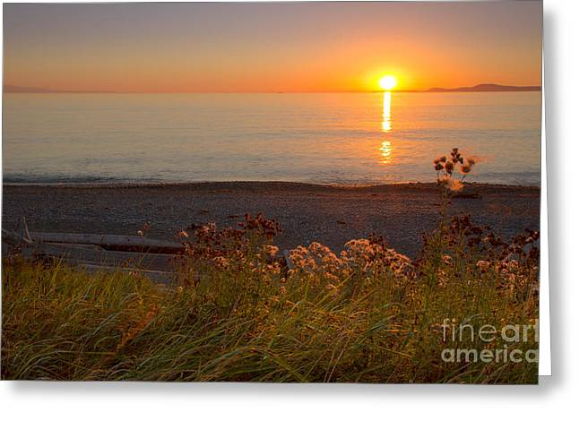 Deception Beach Greeting Cards - Perfect Day Greeting Card by Idaho Scenic Images Linda Lantzy