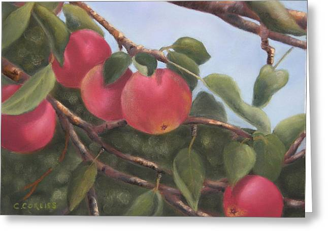 Picking Pastels Greeting Cards - Perfect For Picking Greeting Card by Carol Corliss