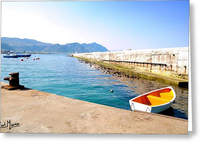 Photo Gallery Website Greeting Cards - Perfect Harbor Image Greeting Card by Earl Maree