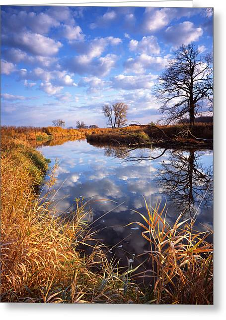 Hack-ma-tack National Wildlife Refuge Greeting Cards - Perfect Morning Greeting Card by Ray Mathis