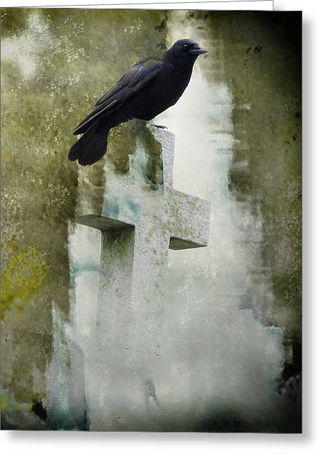 Perfect Perch Greeting Card by Gothicolors Donna Snyder