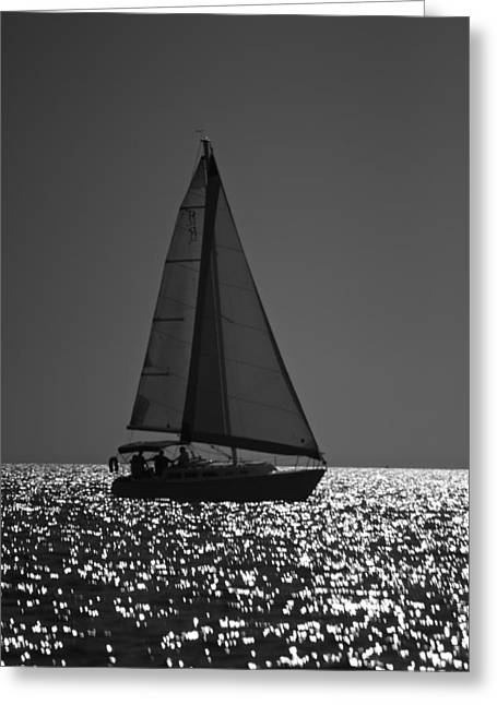 Amazing Jules Greeting Cards - Perfect Sailing Greeting Card by Amazing Jules