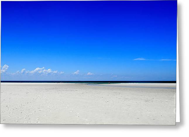 Mayflower Beach Greeting Cards - Perfect Summer Day Greeting Card by Lisa Cranshaw