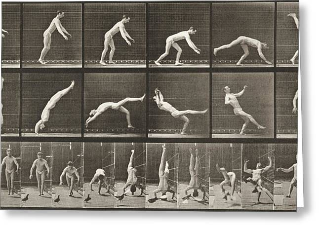 Muybridge Greeting Cards - Performing Flip Greeting Card by Celestial Images