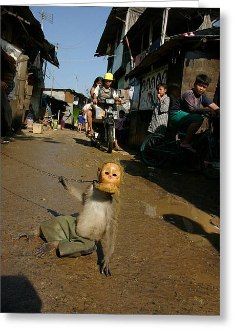 Performance Cruel Greeting Cards - Performing Monkeys Of Jakarta Greeting Card by Ubud High
