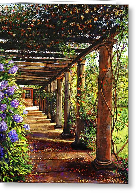 Most Greeting Cards - Pergola Walkway Greeting Card by David Lloyd Glover