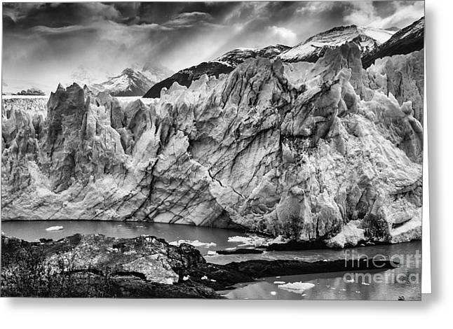 Santa Cruz Art Greeting Cards - Perito Moreno Glacier BW Greeting Card by Timothy Hacker