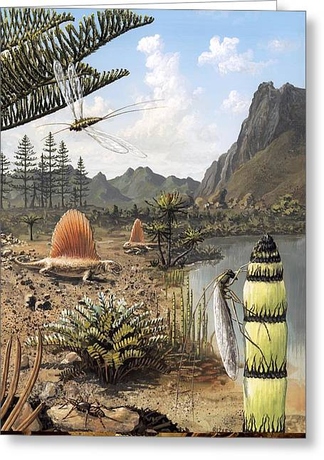 Flying Spider Greeting Cards - Permian of Russia, prehistoric scene Greeting Card by Science Photo Library