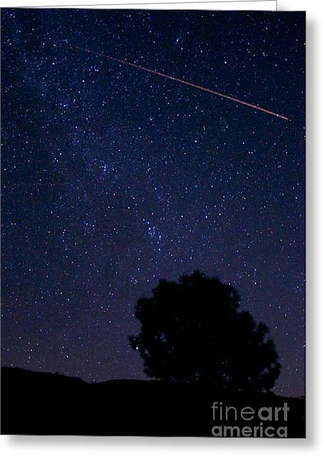 Perseid Meteor Shower Greeting Cards - Perseid Meteor Shower Greeting Card by Allegresse Photography