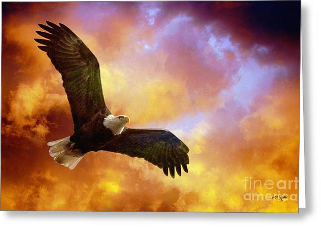 Eagle In Flight Greeting Cards - Perseverance Greeting Card by Lois Bryan