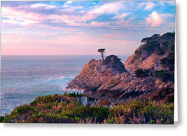 Point Lobos Reserve Greeting Cards - Perseverance Lone Tree Greeting Card by Shelle Ettelson