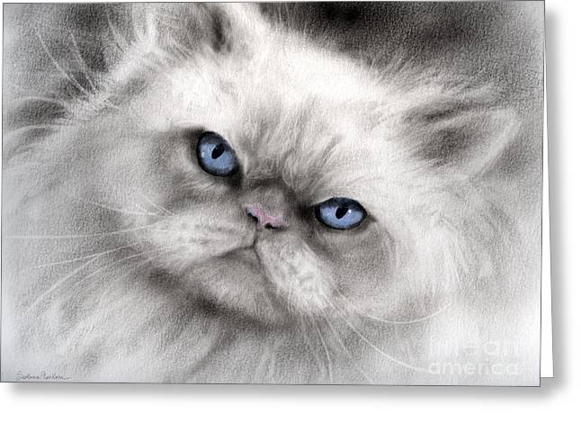 Cat Drawings Greeting Cards - Persian Cat with blue eyes Greeting Card by Svetlana Novikova