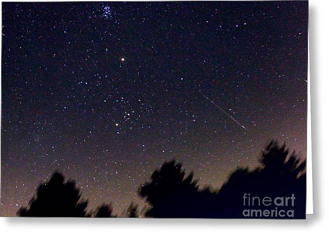Perseid Meteor Shower Greeting Cards - Persied Meteor 2007 Greeting Card by John Chumack
