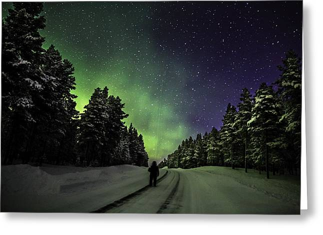Color Green Greeting Cards - Person Enjoying The Aurora Borealis Or Greeting Card by Panoramic Images