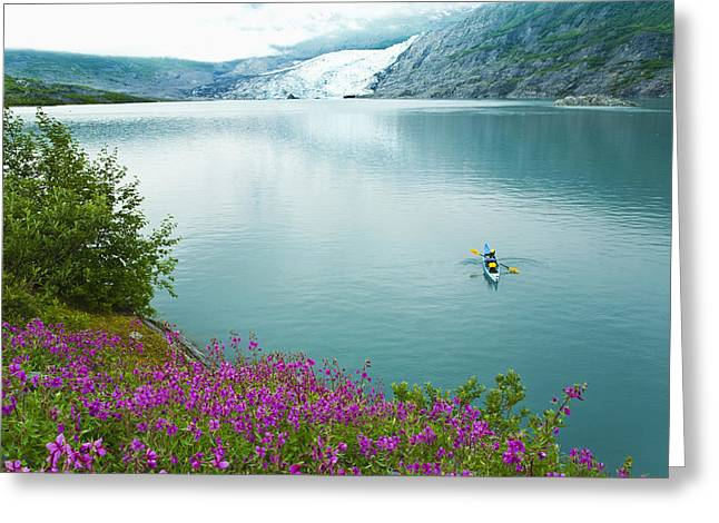 Sea Kayak Greeting Cards - Person Sea Kayaking In Shoup Bay Greeting Card by Michael DeYoung