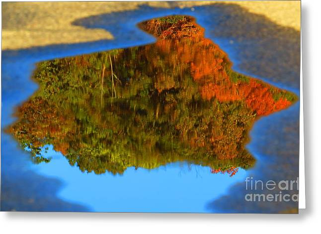 Print On Canvas Greeting Cards - Perspective Greeting Card by Randy Jackson