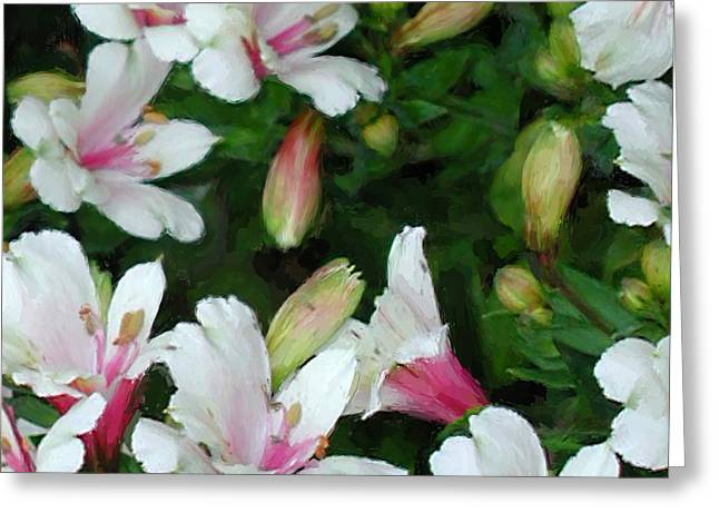 Big Sur Beach Greeting Cards - Peruvian Lilies Greeting Card by Jim Pavelle