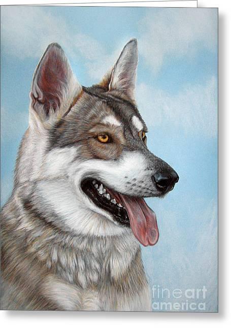 Labradors Pastels Greeting Cards - PET PORTRAIT  23.6x15.7 in Tamaskan Wolfdog Greeting Card by Ksenija Mijokovic