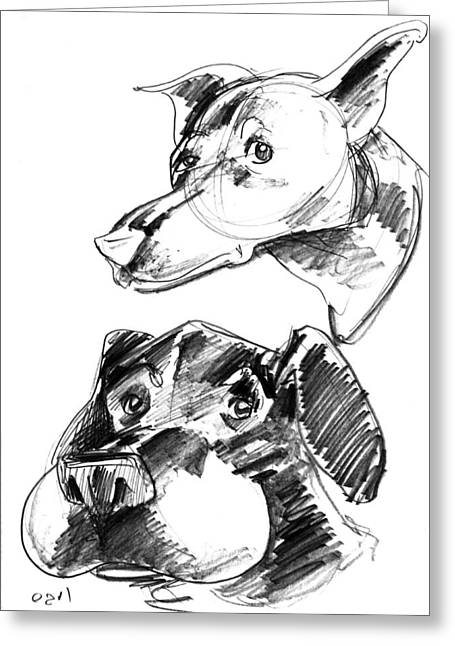 Iroatethis Drawings Greeting Cards - Pet Sketches 5 Greeting Card by Big Mike Roate