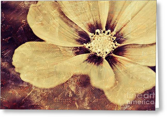 Flora Photography Greeting Cards - Petaline - t37d03a3 Greeting Card by Variance Collections