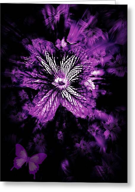 Petals From The Purple Greeting Card by Amanda Eberly-Kudamik