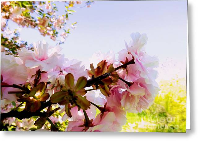 Petals In The Wind Greeting Card by Robyn King
