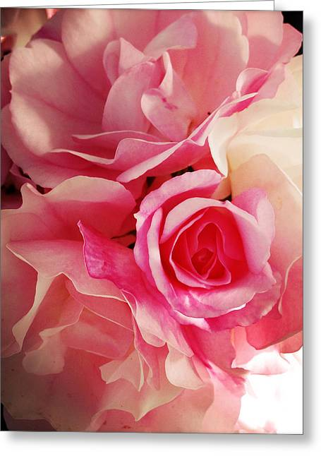 Soft Pink Greeting Cards - Petals Greeting Card by Les Cunliffe