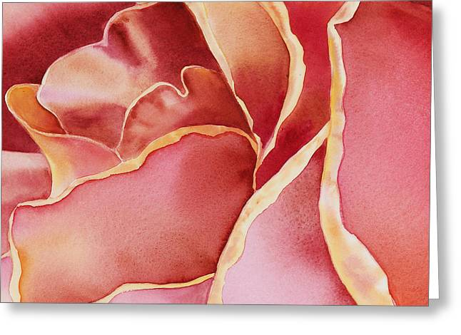 Close Up Paintings Greeting Cards - Petals Petals II  Greeting Card by Irina Sztukowski