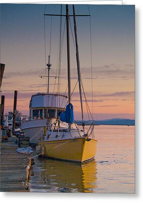 Yellow Sailboats Greeting Cards - Petaluma RIver II Greeting Card by Bill Gallagher