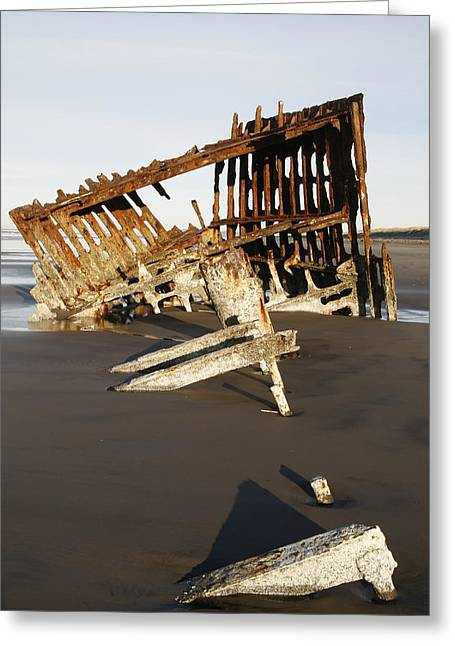 Sea Lions Greeting Cards - Peter Iredale Shipwreck Greeting Card by George Herbert