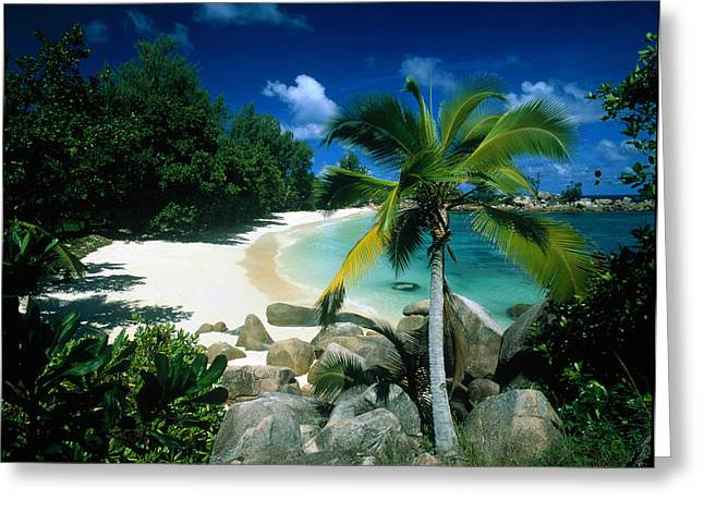 Petite Anse Praslin Seychelles Greeting Card by Panoramic Images