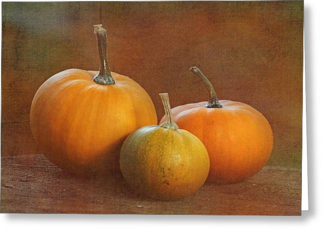 Harvest Time Greeting Cards - Petite Pumpkins Greeting Card by Angie Vogel