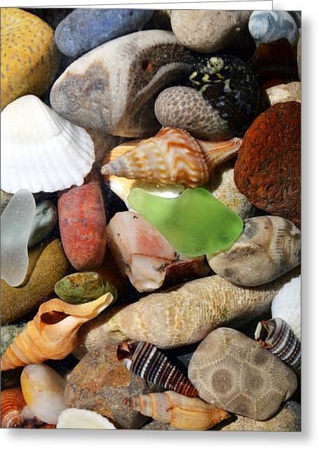 Stones Greeting Cards - Petoskey Stones l Greeting Card by Michelle Calkins