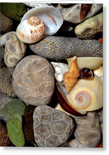 Stones Greeting Cards - Petoskey Stones ll Greeting Card by Michelle Calkins