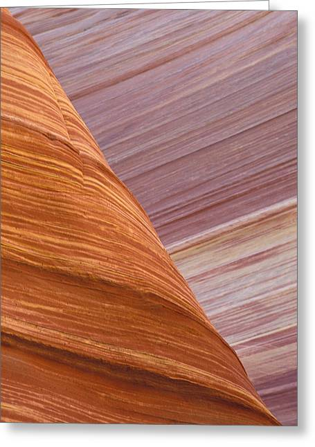 Nature Abstracts Greeting Cards - Petrified Dunes Coyote Buttes Paria Greeting Card by Fritz Polking