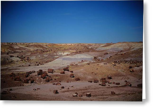 Petrified Forest National Park Greeting Cards - Petrified Forest Greeting Card by Dan Sproul