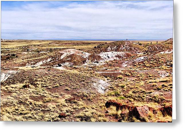 Triassic Greeting Cards - Petrified Forest National Park Greeting Card by Dan Sproul