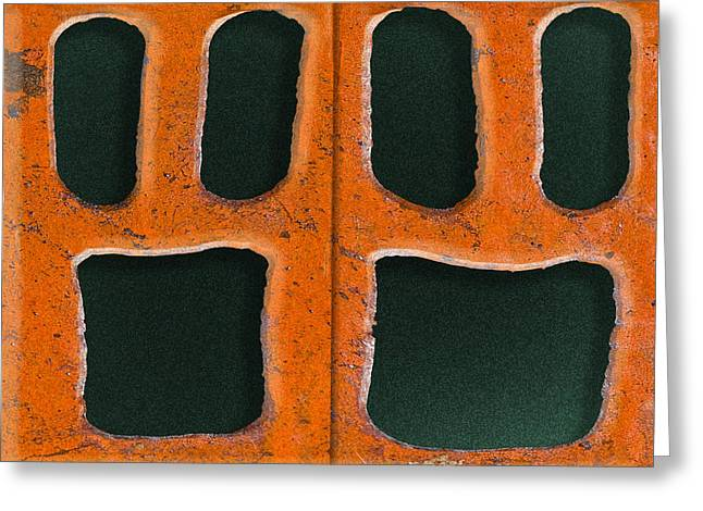 Drain Digital Art Greeting Cards - Petrified Greeting Card by Paul Wear