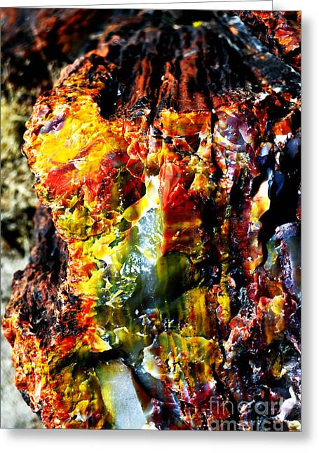 Petrified Wood Macro At Petrified Forest National Park Vivid Color Greeting Card by Shawn O'Brien