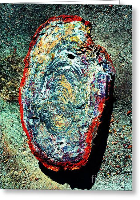 Petrified Forest Greeting Cards - Petrified Wood Rainbow Cross Section Macro at Petrified Forest National Park Vivid Greeting Card by Shawn O