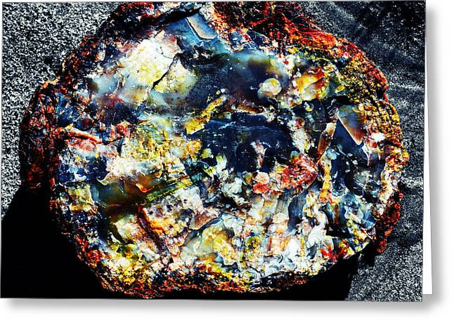 Crystals Greeting Cards - Petrified Wood Rainbow Cross Section Macro Petrified Forest National Park Square Vivid Color Splash Greeting Card by Shawn O