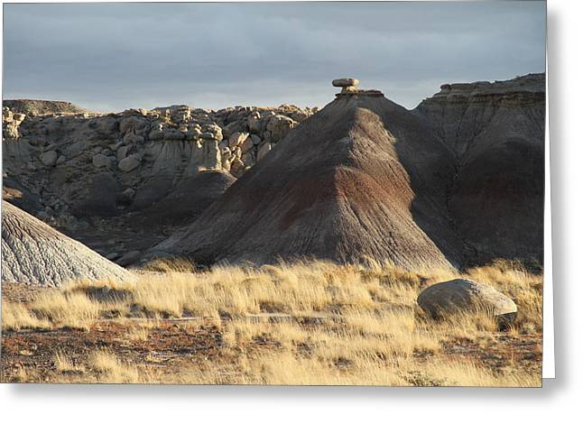 The Petrified Forest Greeting Cards - Petrifies Forest Greeting Card by Guido Prussia