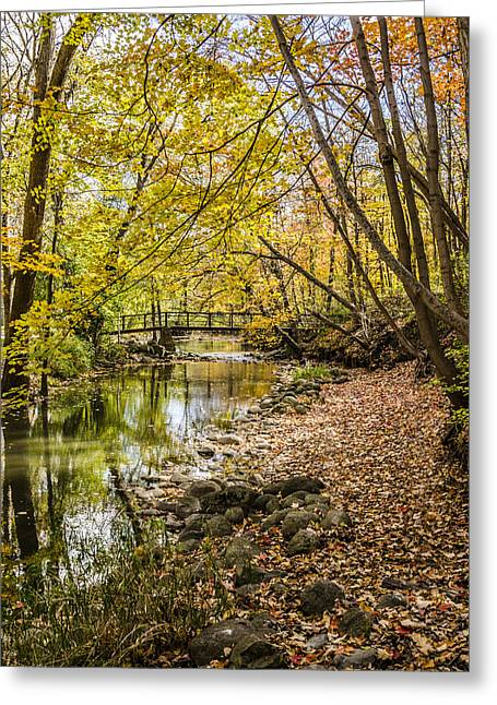 Petrifying Springs Greeting Cards - Petrifying Springs Park Greeting Card by Thomas Visintainer