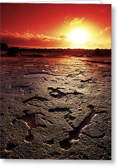 Print On Acrylic Greeting Cards - Petroglyphs Hawaii Greeting Card by Sean Davey