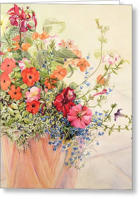 Petunias Lobelias Busy Lizzies And Fuschia In A Terracotta Pot Greeting Card by Joan Thewsey