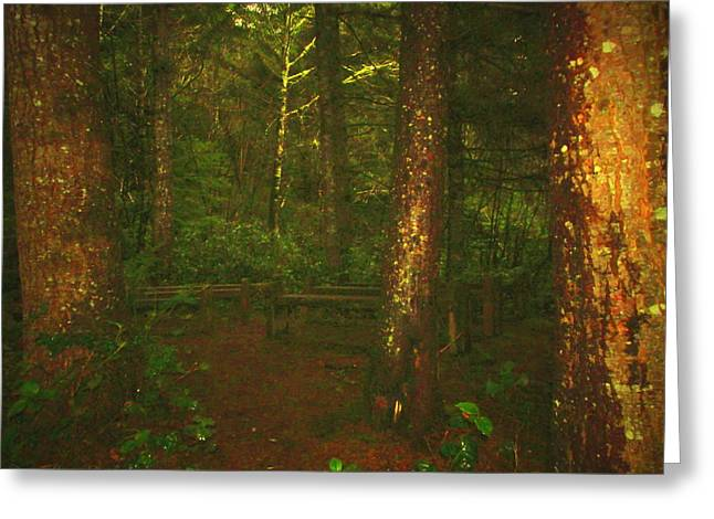 Wall Art Greeting Cards - Pews In The Forest Greeting Card by Joyce Dickens