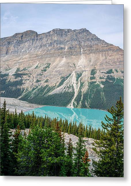 Fed Greeting Cards - Peyto Lake 1 Greeting Card by Douglas Barnett